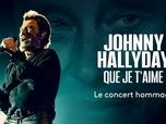 Replay france2: Johnny hallyday:  que je t'aime