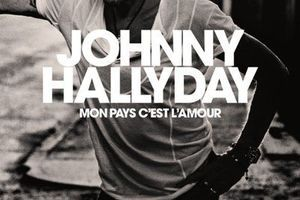 Top albums France Fnac:  Johnny Hallyday chute encore